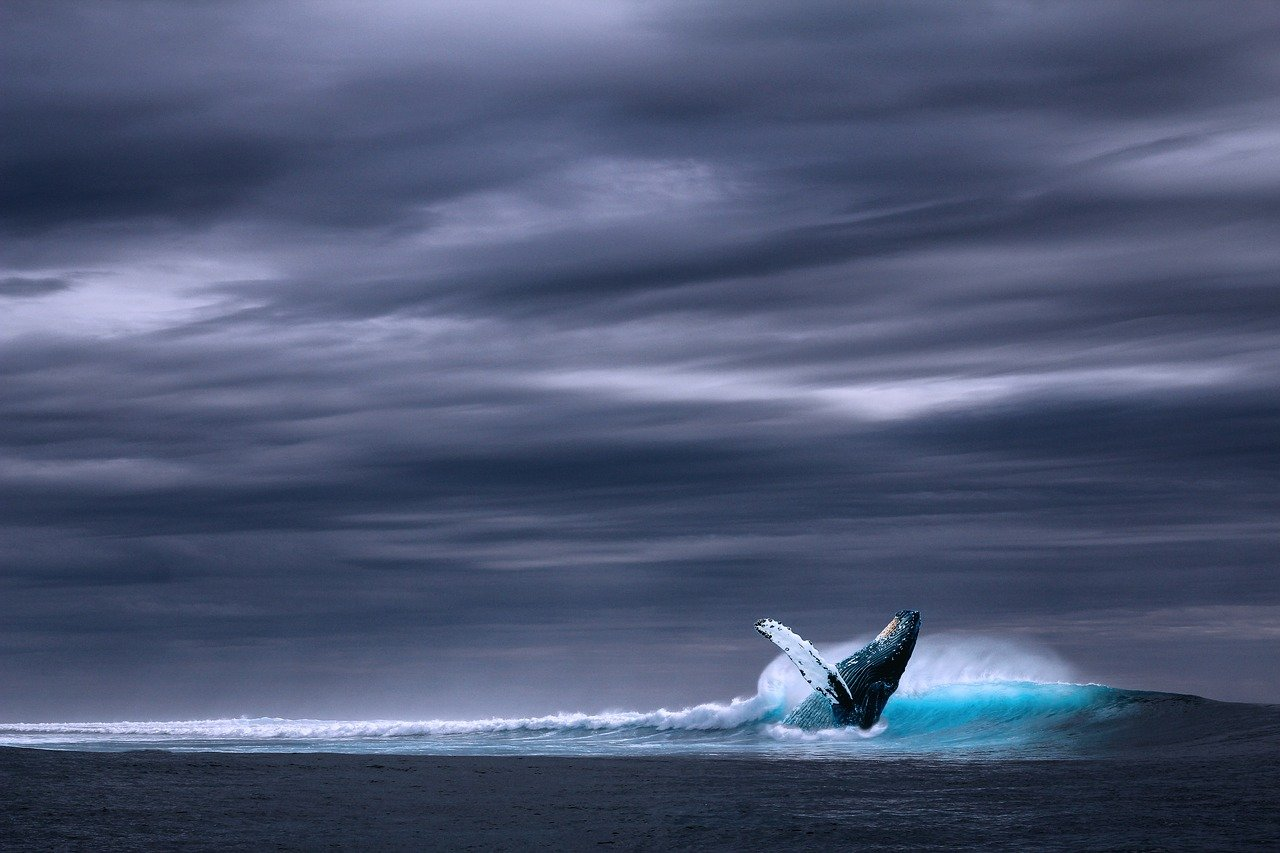 OCEAN'S END